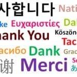 Traducción ecommerce
